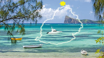 Dive safari